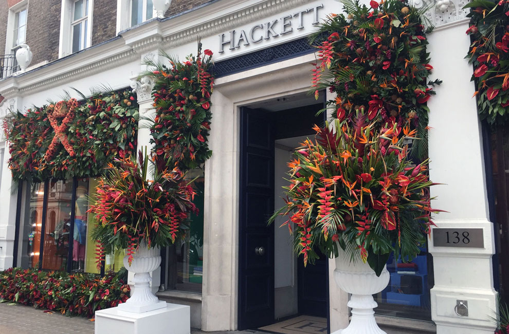 Hackett window